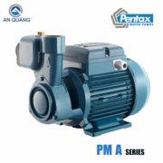 máy bơm nước dân dụng Pentax PM 45A